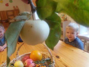 rohelne kool lastehoid midrimaailm eralasteaed